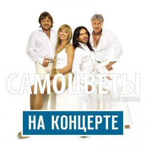 Группа САМОЦВЕТЫ